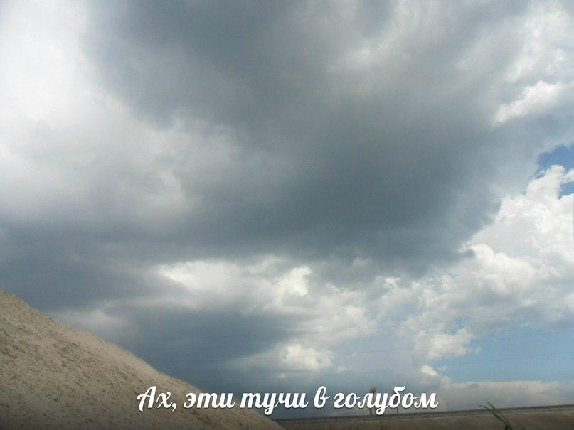 Песня в небе кружит голубком скачать