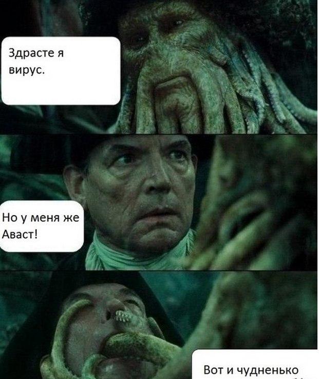 Tat'yana snopkova, ms zali