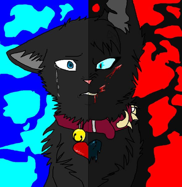 коты-воители бич фото