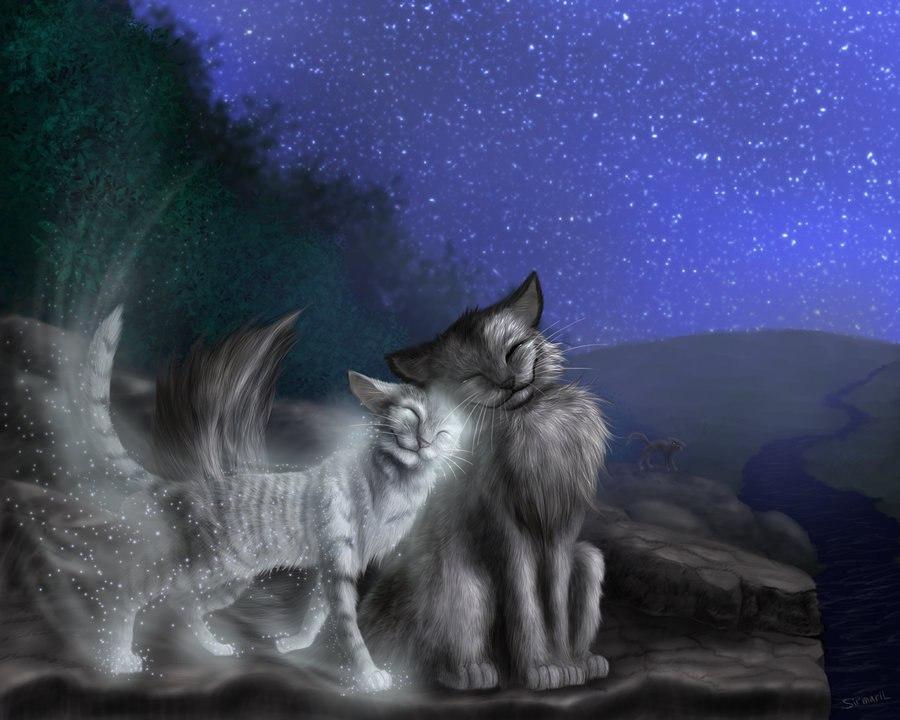 картинки коты-воители серебрянка и крутобок