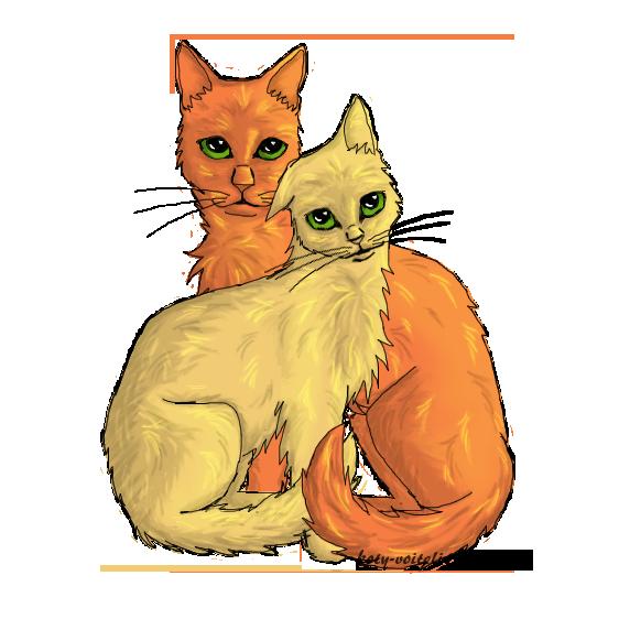 коты воители картинки песчаная буря и огнезвёзд