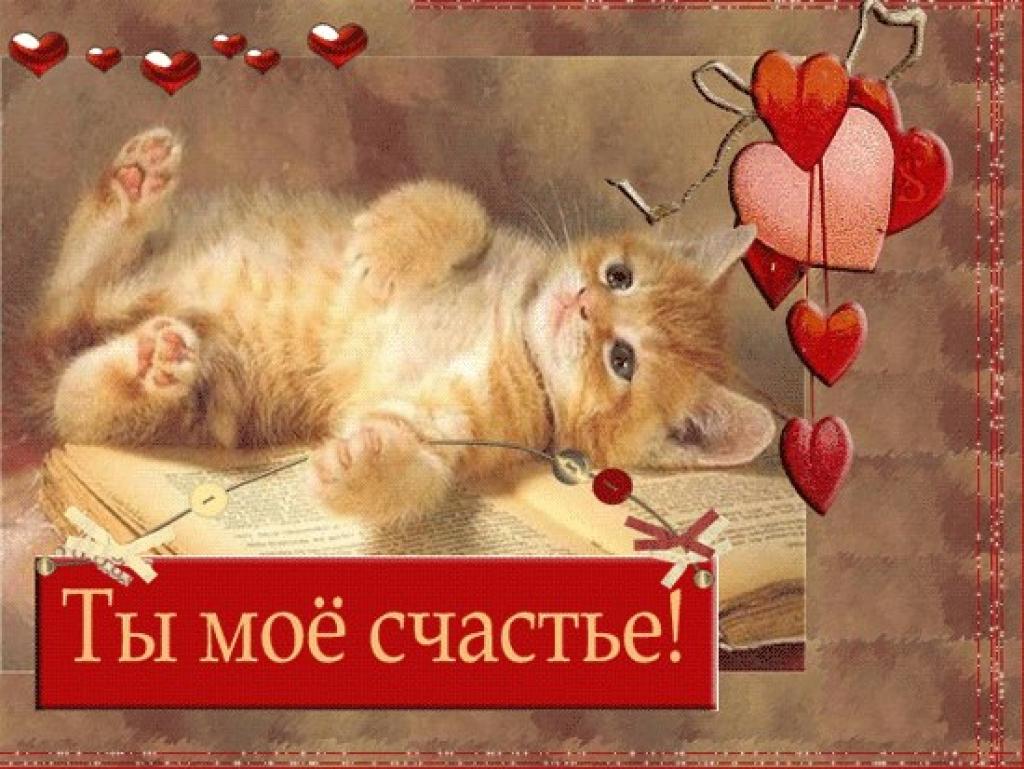 Открытка для любимой с котятами 665