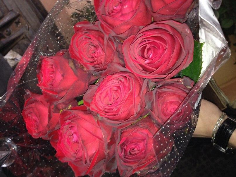 алые розы слушать онлайн песня