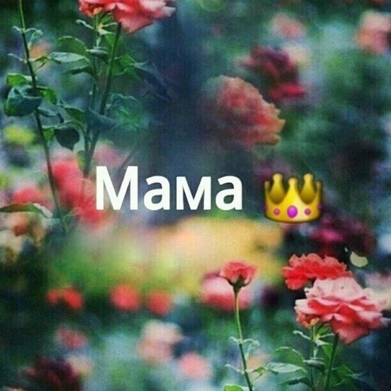 мама моя фото