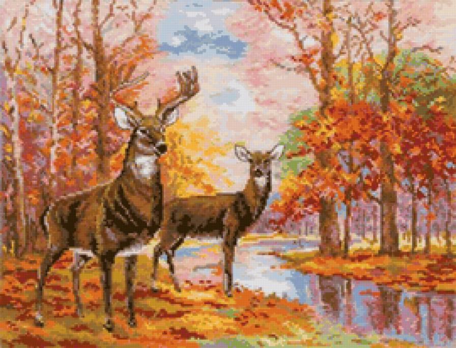 Осенний лес: 27 фотографий — российское фото.