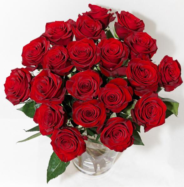 А внутри у него розы тёмно алые скачать.
