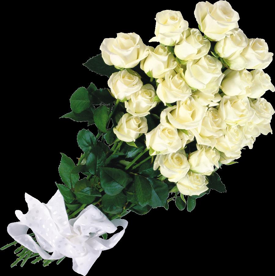 Букет из белых роз в. Королёв,и. Круг скачать песню королёв букет.